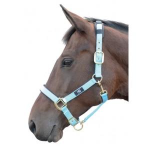 http://horseandrider.co.uk/1035-2024-thickbox/hy-deluxe-padded-head-collar.jpg