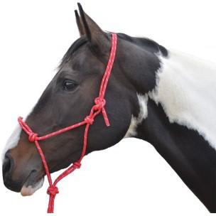http://horseandrider.co.uk/1054-2171-thickbox/hy-rope-halter.jpg