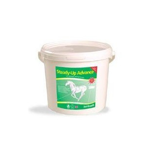 http://horseandrider.co.uk/250-366-thickbox/feedmark-steady-up-advance-2kg.jpg