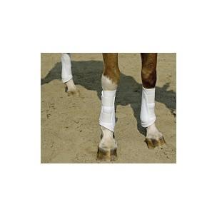 http://horseandrider.co.uk/310-1919-thickbox/tri-zone-black-brushing-boot.jpg