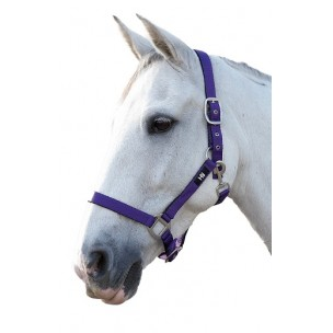 http://horseandrider.co.uk/313-1514-thickbox/hy-soft-touch-adjustable-head-collar.jpg