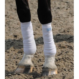 http://horseandrider.co.uk/42-156-thickbox/stretch-flex-cool-space-exercise-bandage.jpg