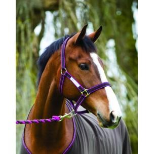 http://horseandrider.co.uk/542-1262-thickbox/amigo-headcollar-leadrope-set-.jpg