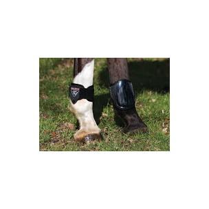 http://horseandrider.co.uk/72-1916-thickbox/dalmar-fetlock-boot.jpg