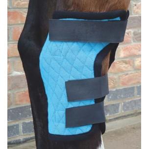 http://horseandrider.co.uk/74-189-thickbox/harpley-magnetic-hock-wrap.jpg