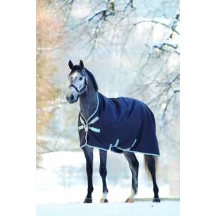 http://horseandrider.co.uk/762-1229-thickbox/horseware-amigo-bravo-12-wug-250g-medium-turnout-rug-aarw32-.jpg