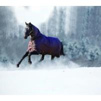 Horseware Amigo Bravo 12 AllinOne Turnout Rug Heavy (AARE23)