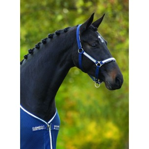 http://horseandrider.co.uk/808-1204-thickbox/horseware-rambo-grand-prix-head-collar-dhag20.jpg