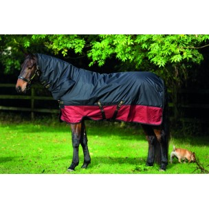 http://horseandrider.co.uk/868-1232-thickbox/horseware-amigo-mio-one-piece-medium-t-o-200g-aasj42.jpg