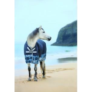 http://horseandrider.co.uk/874-3054-thickbox/horseware-amigo-hero-6-lite-0g-turnout-rug-disc-front-closure.jpg
