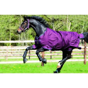 http://horseandrider.co.uk/899-1308-thickbox/horseware-amigo-hero-6-turnout-lite-og-rug-aara71s15.jpg