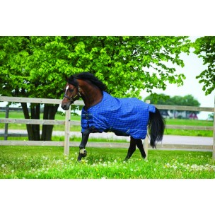 http://horseandrider.co.uk/902-1314-thickbox/horseware-rhino-pony-plus-turnout-medium-200g-rug-akbp92.jpg