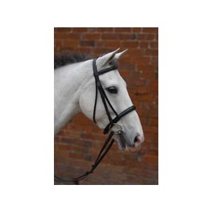 http://horseandrider.co.uk/910-1337-thickbox/hy-padded-cavesson-bridle-with-rubber-grip-reins.jpg